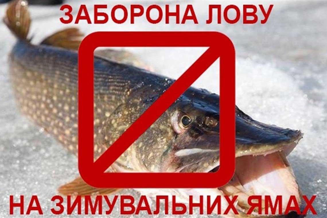 Картинки по запросу Чому не можна рибалити на зимувальних ямах?